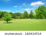 beautiful meadow in the park    ... | Shutterstock . vector #160414514
