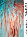 Exotic Flamingo Texture Feathe...