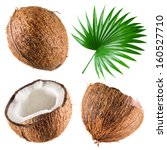 Coconuts With Palm Leaf On...