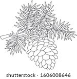 big cone hanging on a prickly... | Shutterstock .eps vector #1606008646