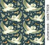 flying owls. seamless pattern... | Shutterstock .eps vector #160675028