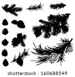 Pine Branches And Cones Black...