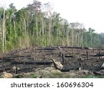 destroyed tropical rainforest... | Shutterstock . vector #160696304
