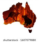 Small photo of Fire in Australia. Animals killed in Fiers. Catastrophe and apocalypse. Pray for Australia