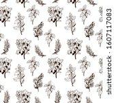 herbs hand drawn  line pattern. ... | Shutterstock .eps vector #1607117083