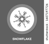 snowflake icon. flat...   Shutterstock .eps vector #1607197726