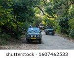 Ranthambore  Rajasthan   India  ...