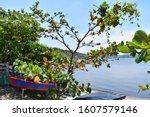 A Boat In Guanabara Bay In Rio...