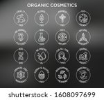 organic cosmetics set of thin... | Shutterstock .eps vector #1608097699