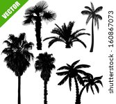 set of palm tree silhouettes on ...   Shutterstock .eps vector #160867073