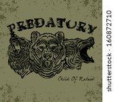 the bear vector | Shutterstock .eps vector #160872710