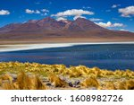 Bolivia  The Southwest Of The...