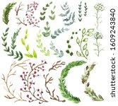 set of grass. forest. green ... | Shutterstock . vector #1609243840