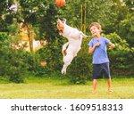 Happy kid looking at jumping dog catching basketball ball