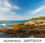 Beautiful Seascape With Sea An...