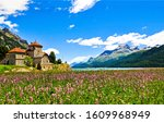 Mountain meadow lake house view. Meadow flowers house in summer mountains. Summer mountain meadow flowers landscape. Meadow house in mountains