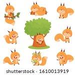 Cartoon Squirrel Character...