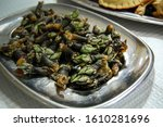 Small photo of Close up of seafood delicacy in Iberian peninsula - percebes or pollicipes pollicipes, known as the goose neck barnacle, goose barnacle or leaf barnacle