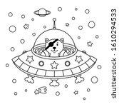 Alien Cat Pirate In A Spaceship ...