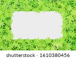 paper sheet on green leaves... | Shutterstock . vector #1610380456