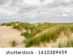 Beach Scenery Seen At...