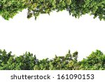 green leaf | Shutterstock . vector #161090153