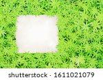 paper sheet on green leaves... | Shutterstock . vector #1611021079