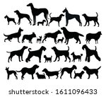 set of diverse dog icons 2   Shutterstock .eps vector #1611096433