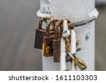 Three Rusty Padlocks Hanging O...