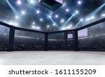 3d Render Mma Arena. Mma...