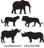 Africa's Big Five Animals ...