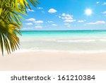 stunning caribbean beach with... | Shutterstock . vector #161210384
