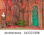 Ivy With Red Leaves Grow On Re...