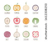 set of caption vegetable slices ... | Shutterstock .eps vector #1612338253