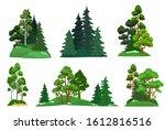 forest trees. green fir tree ... | Shutterstock . vector #1612816516