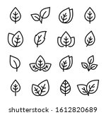 collection black icons of leaf... | Shutterstock . vector #1612820689