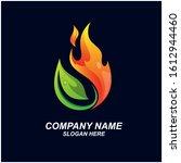 Leaf And Fire Logo Design