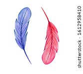 Blue And Red Feathers ...