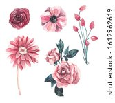 watercolor collection of pink...   Shutterstock . vector #1612962619
