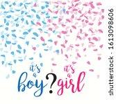 it s a boy or it s s girl... | Shutterstock .eps vector #1613098606