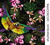 tropical parrots  orchids...   Shutterstock .eps vector #1613622496