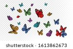 flying butterflies. colorful... | Shutterstock .eps vector #1613862673