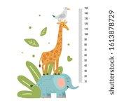 height measure. measuring ruler ... | Shutterstock .eps vector #1613878729