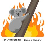 fires in the habitats of koalas.... | Shutterstock .eps vector #1613946190