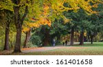 several walkers and people on... | Shutterstock . vector #161401658