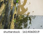 River Water Lapping Stone Step.