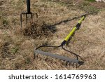Small photo of Raking leaves using rake. Person taking care of garden house yard grass. Agricultural, gardening equipment concept