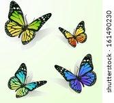 Stock vector multicolor butterflies 161490230