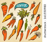 set simple sketch icons carrots ... | Shutterstock .eps vector #161550980