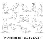 kangaroo black and white...   Shutterstock .eps vector #1615817269